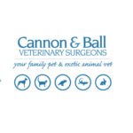 cannon-and-ball