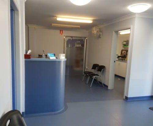 vet-clinic-rennovation-reception-desk