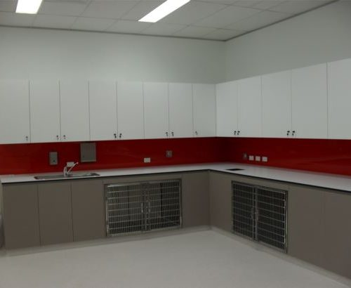 vet-surgical-specialists-fit-out-parramatta