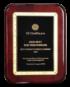 GE Healthcare Award - 2020 Best EHS Peformers